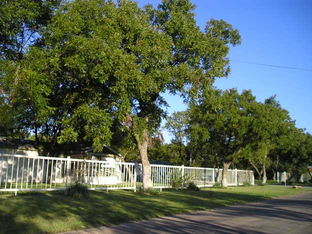 The Orchard Manfuctured Home & RV Park